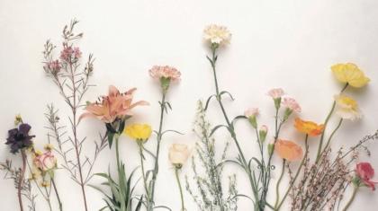 Co jest piękne w edukacji domowej 1 by Kornelia Orwat