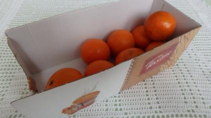 jak pakowac zakupy owoce