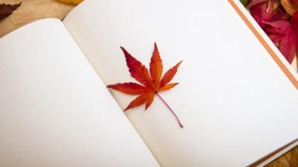 co mi w blogerskiej duszy gra czyli kochany pamiętniku