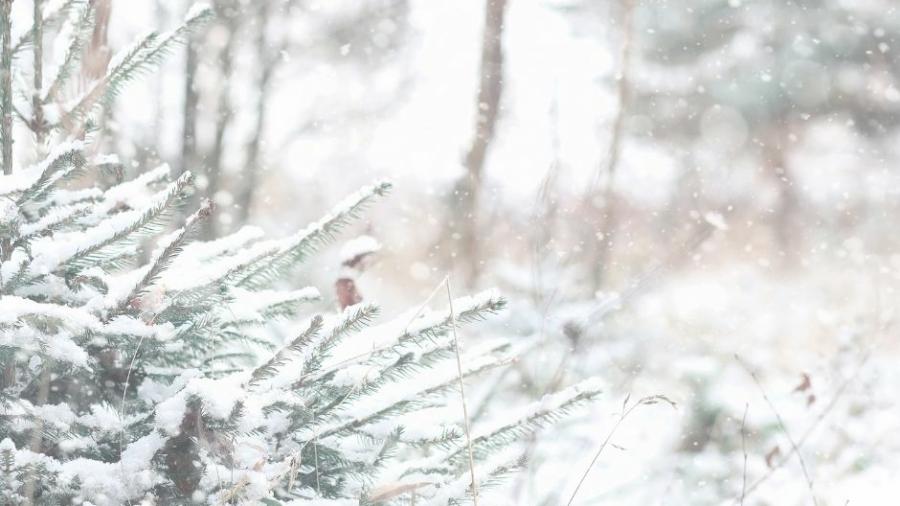 Boże-Narodzenie-tuż-tuż (2)